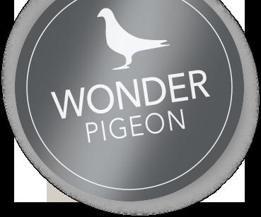 WonderPigeon Logo